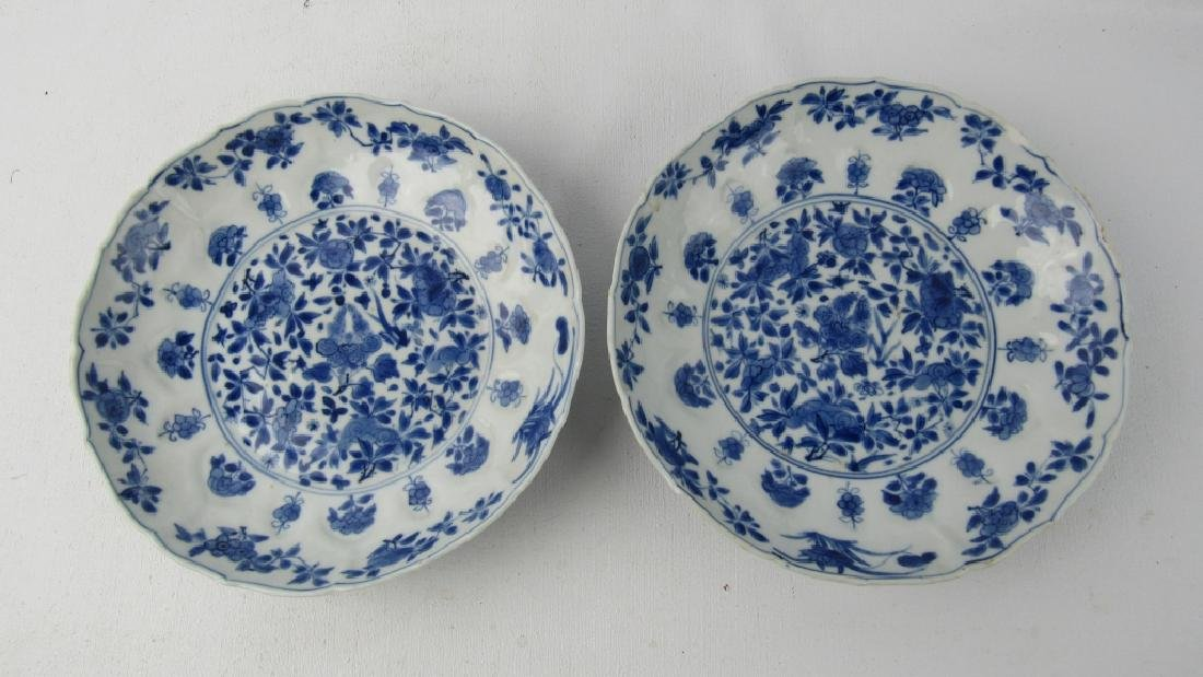 Pair 17th Century Qing Dynasty Kangxi Blue and W