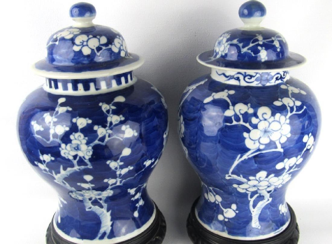 Qing Dynasty Blue & White Tea Jar