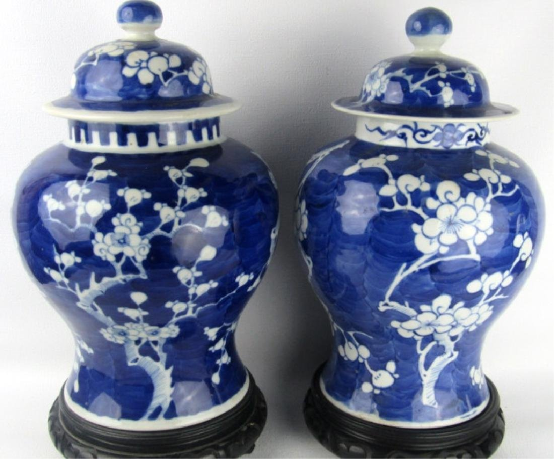 Qing Dynasty Blue & White Jars