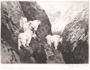 Goats By Carl Rungius (1869-1959)