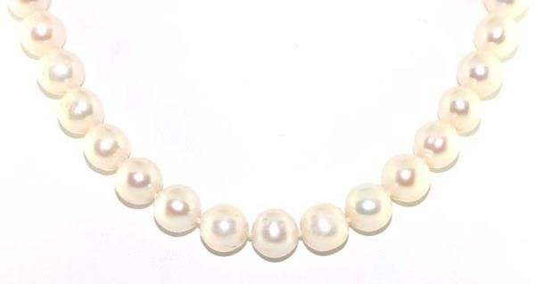 3013: 10-11mm FINE QUALITY PEARL NECKLACE