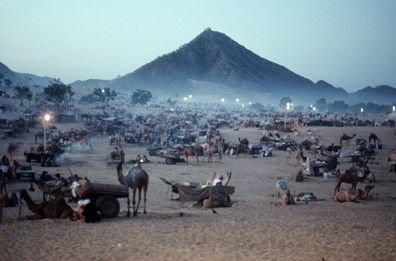Peter Guttman Photo- American  Camel Fair (1991)