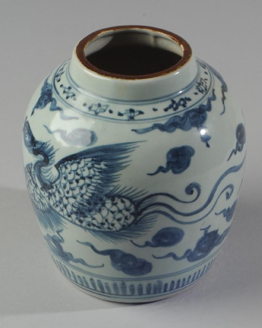 Chinese Blue & White Porcelain Jar - 3