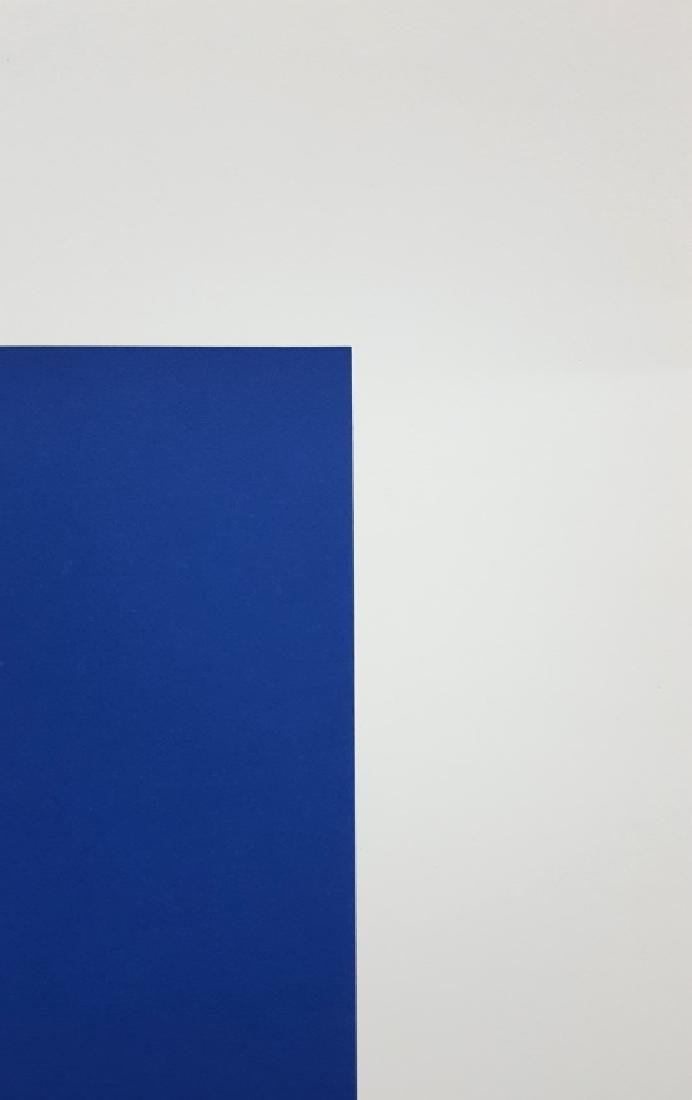 After Ellsworth Kelly (1923-2015) Lithograph - 8