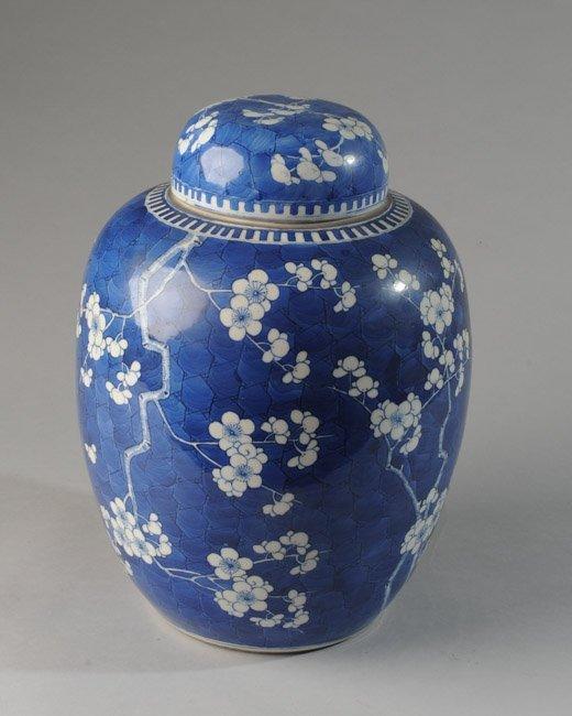 19th C. Chinese Prunus Blossom Ginger Jar