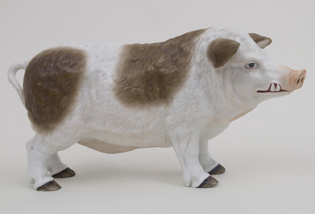 Großes Porzellan Wollschwein / A huge porcelain wooly