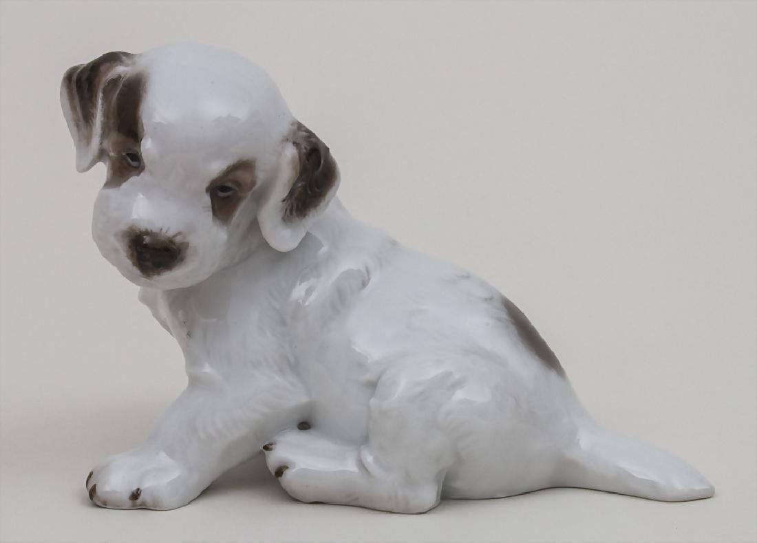 Tierfigur 'sitzender Terrier-Welpe' / A sitting terrier