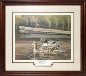 JIM FOOTE LITHOGRAPH SPRING COURTSHIP PINTAILS 1884