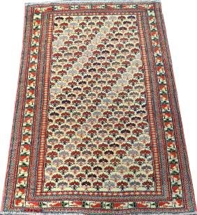 PAKISTANI SHIRVAN FINE WOOL CARPET