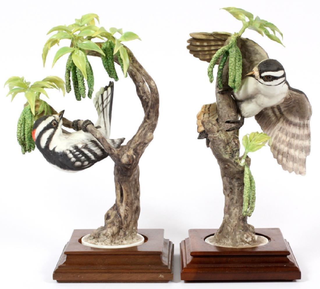 ROYAL WORCESTER PORCELAIN BIRD FIGURINE 1967 PAIR