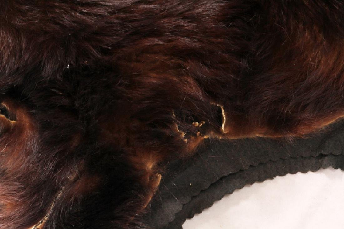 BROWN BEAR RUG - 3