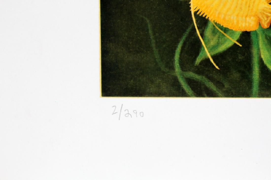 DOUG AULD COLOR OFFSET LITHOGRAPHS - 10