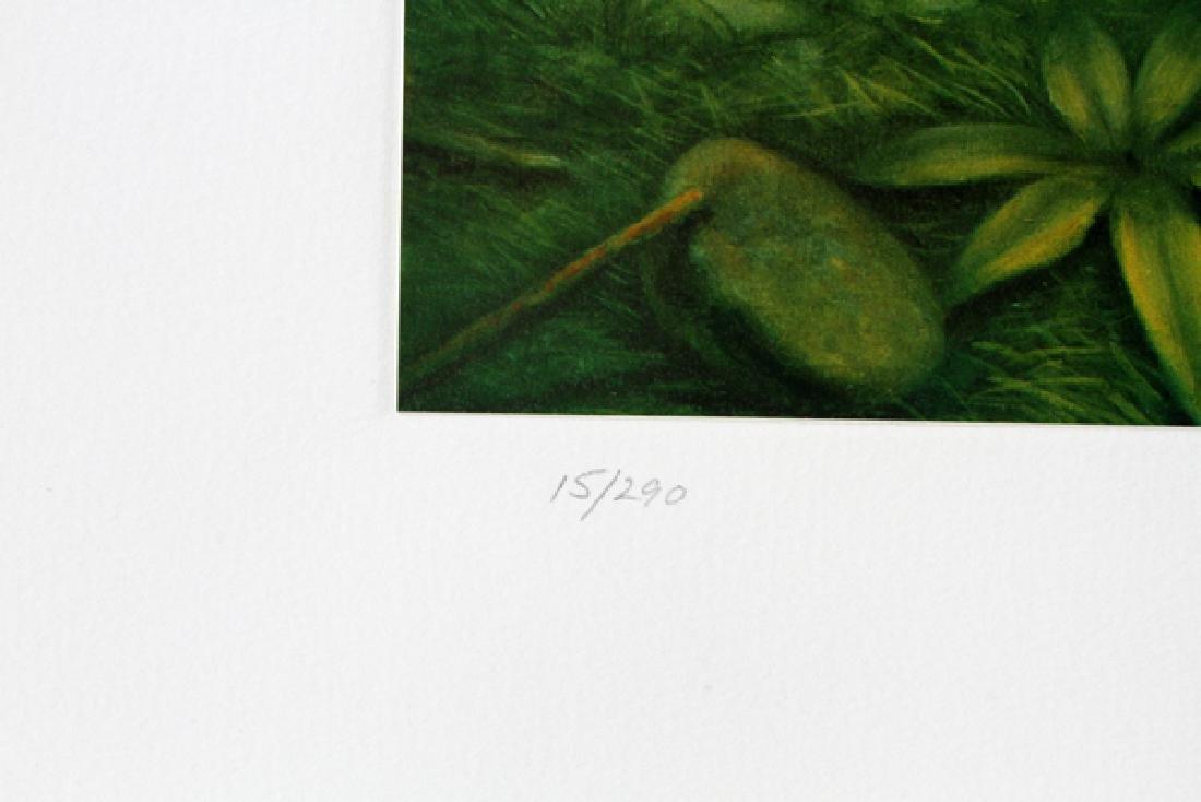 DOUG AULD COLOR OFFSET LITHOGRAPHS - 4