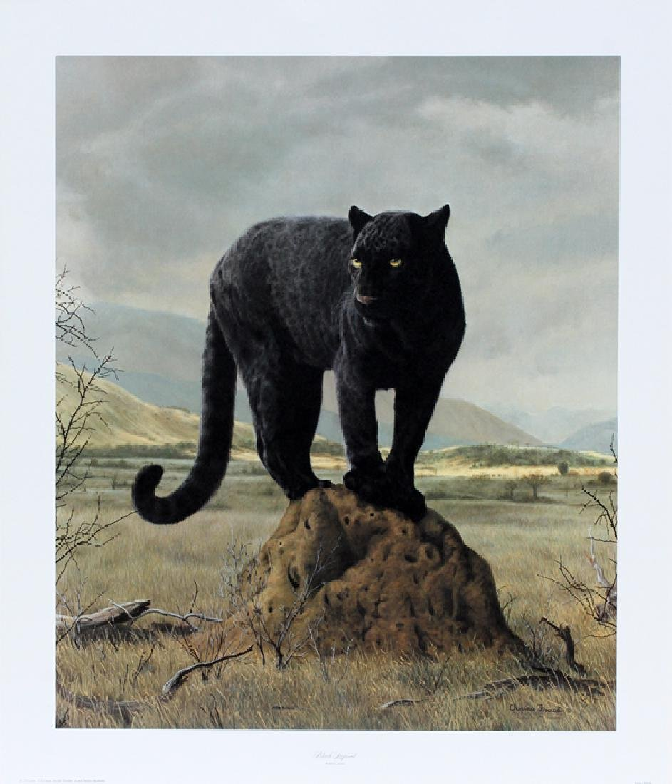 "CHARLES FRACE COLOR LITHOGRAPH ""BLACK LEOPARD"""