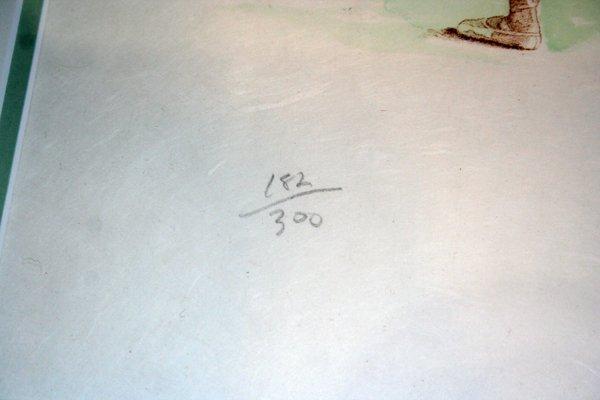 110063: DOUGLAS HOFMANN PRINTS SIGNED & NUMBERED - 5