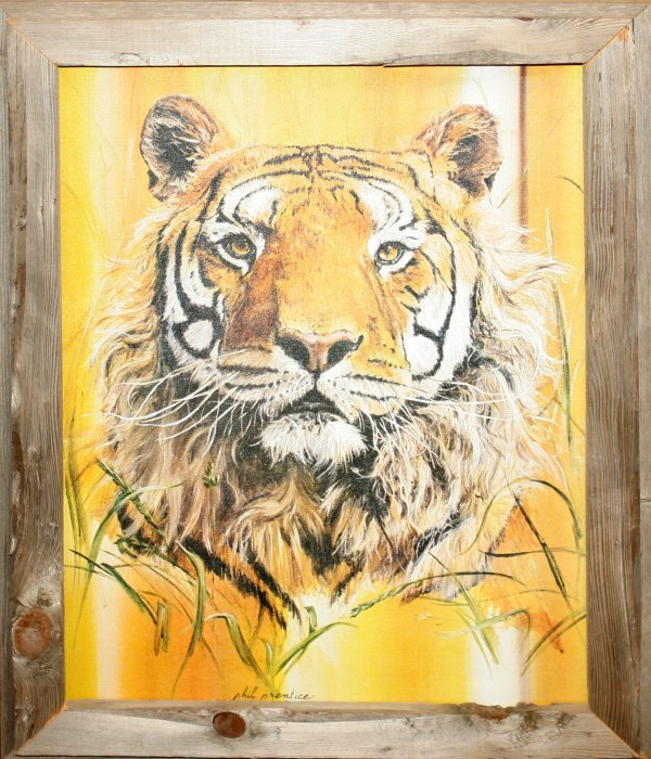011337: PHIL PRENTICE OIL ON CANVAS, SEATED TIGER