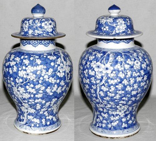 041016: CHINESE 'BLUE HAWTHORNE' PORCELAIN COVERED JARS