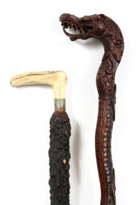 Walking Sticks 2 Pcs.