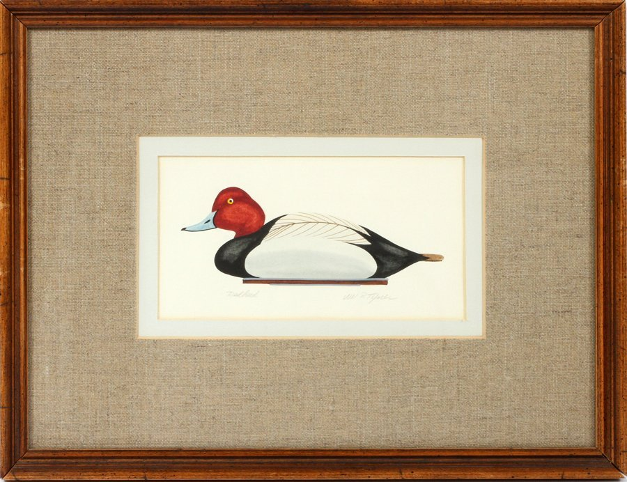 WILLIAM P TYNER COLOR LITHOGRAPH OF A DUCK DECOY