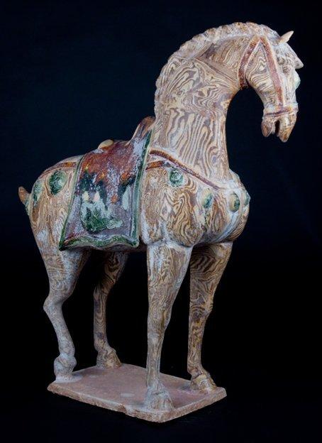 Sanchai horse