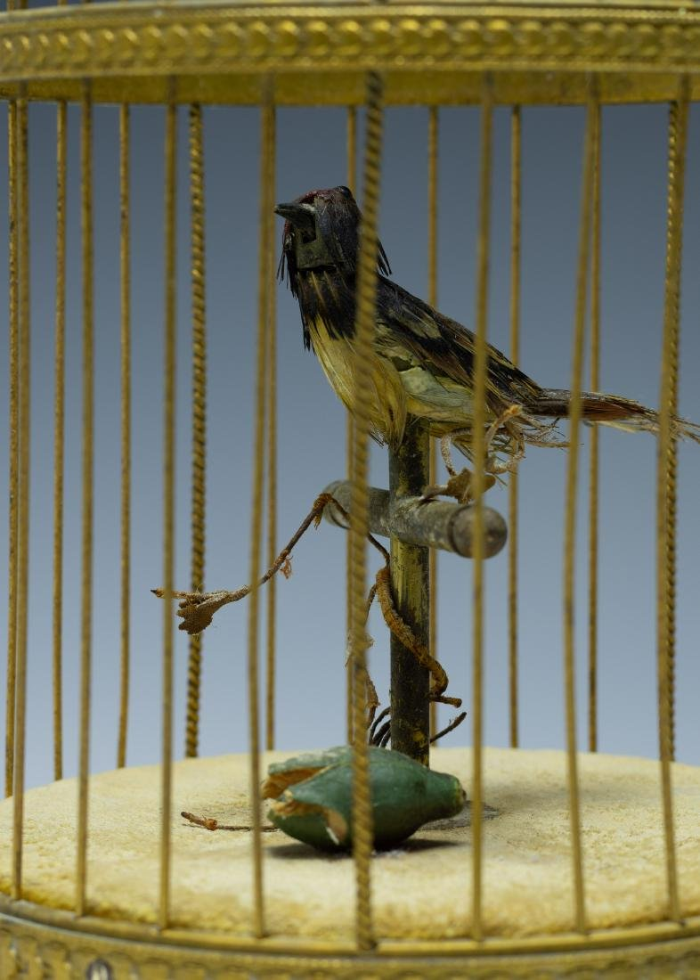 Singing Bird in Cage Automaton from France - 5
