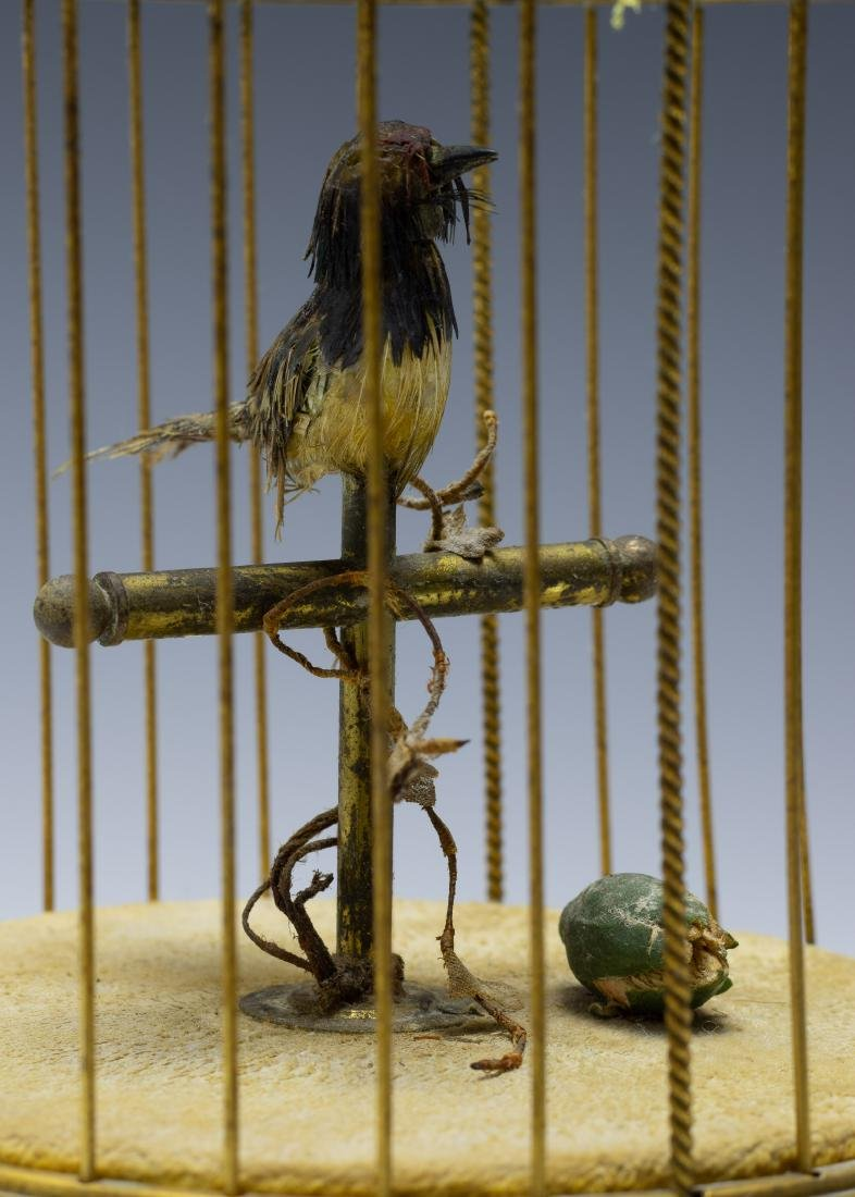 Singing Bird in Cage Automaton from France - 6