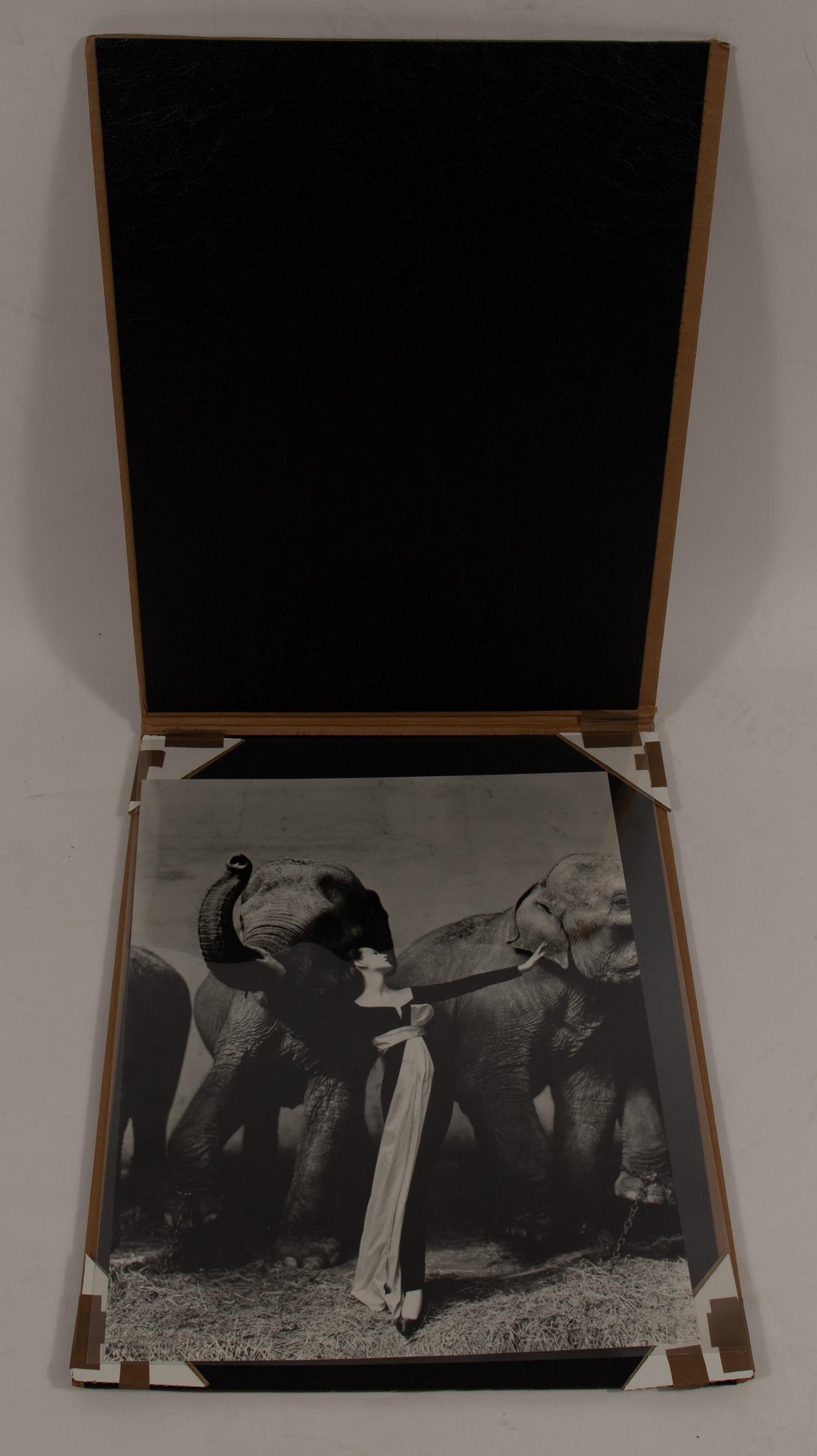 Richard Avedon Dovima with Elephants