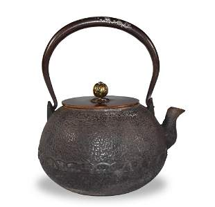 Japanese Iron and Bronze Teapot with Silver