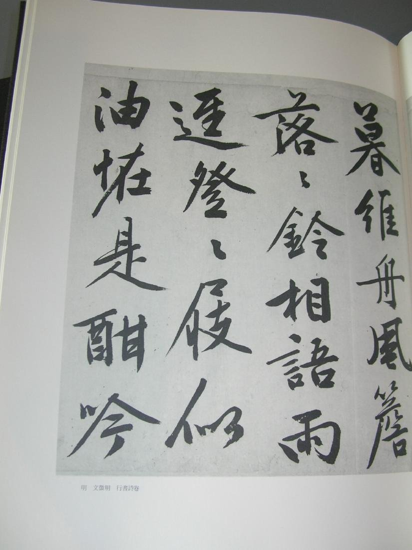 Collection of Classical Chinese Paintings & - 10