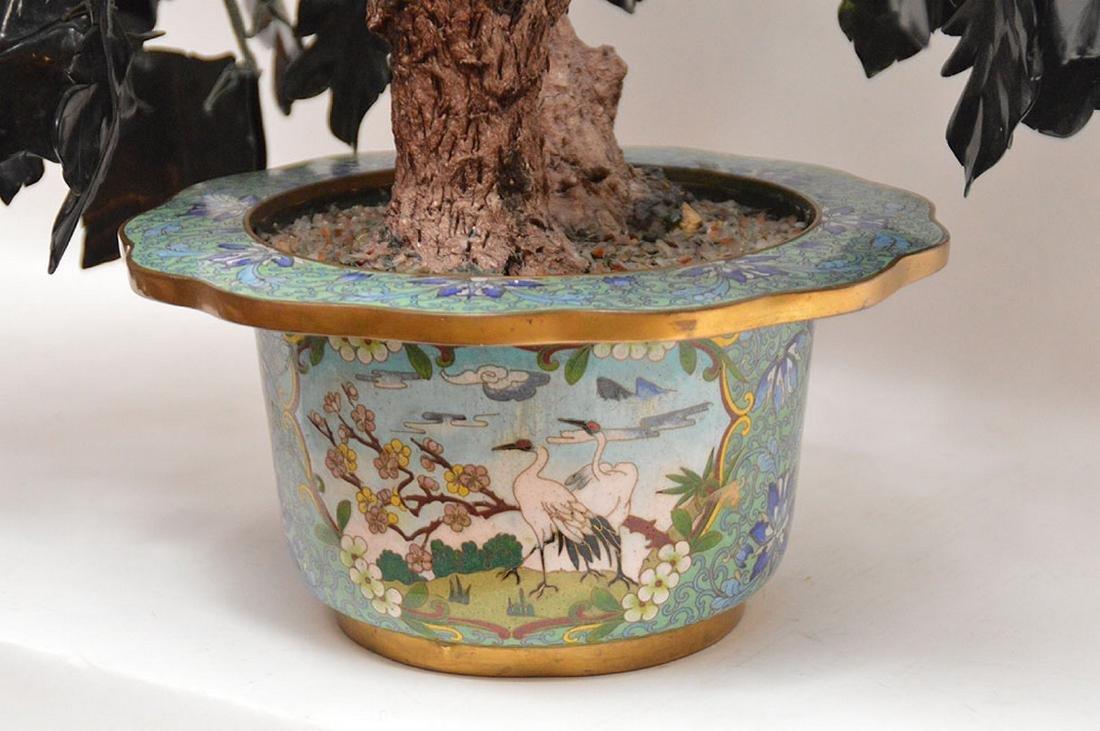 Jade floral tree - 8