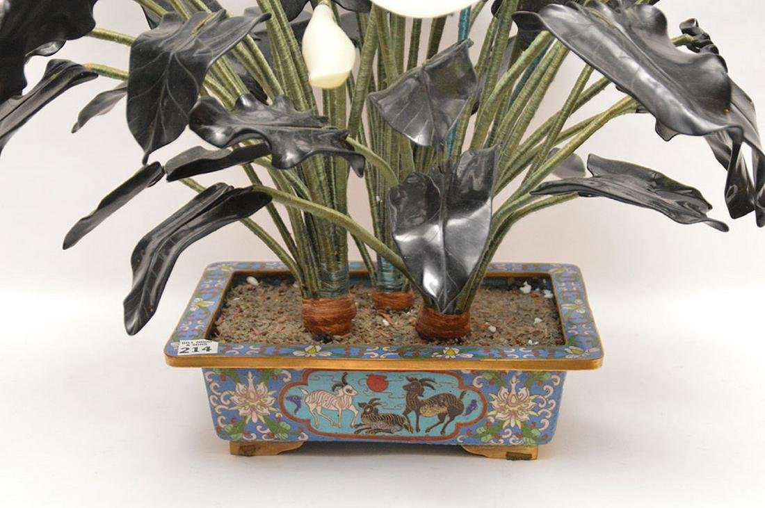 "Jade ""Jack in The Pulpit"" tree in cloisonné planter, - 4"