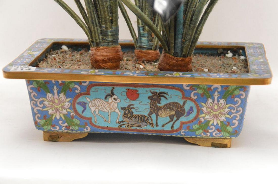 """Jade """"Jack in The Pulpit"""" tree in cloisonné planter, - 5"""