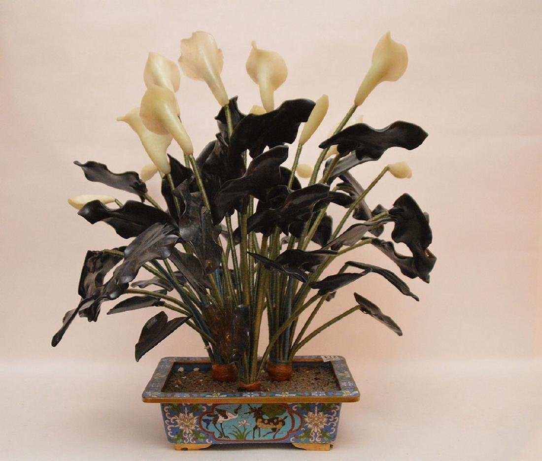 """Jade """"Jack in The Pulpit"""" tree in cloisonné planter, - 6"""