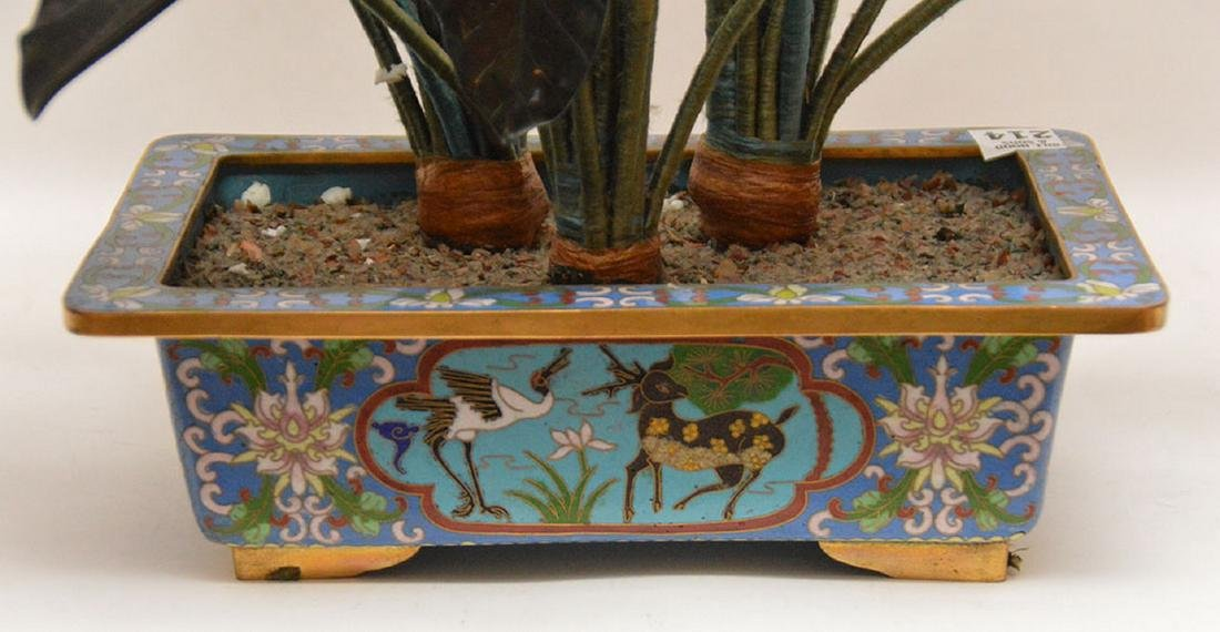 "Jade ""Jack in The Pulpit"" tree in cloisonné planter, - 7"