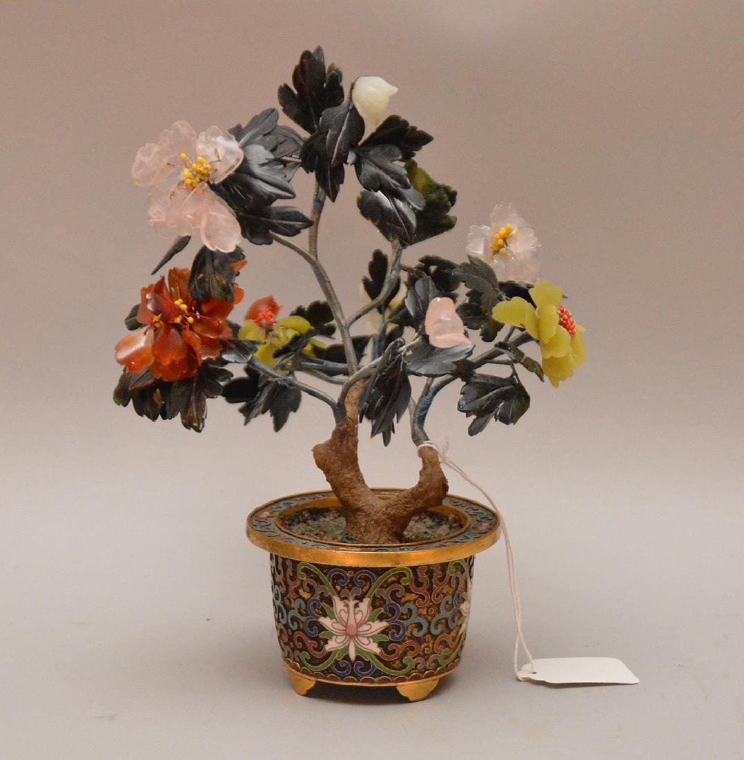 """Chinese Jade Tree in cloisonné pot.  H. 9 3/4"""""""