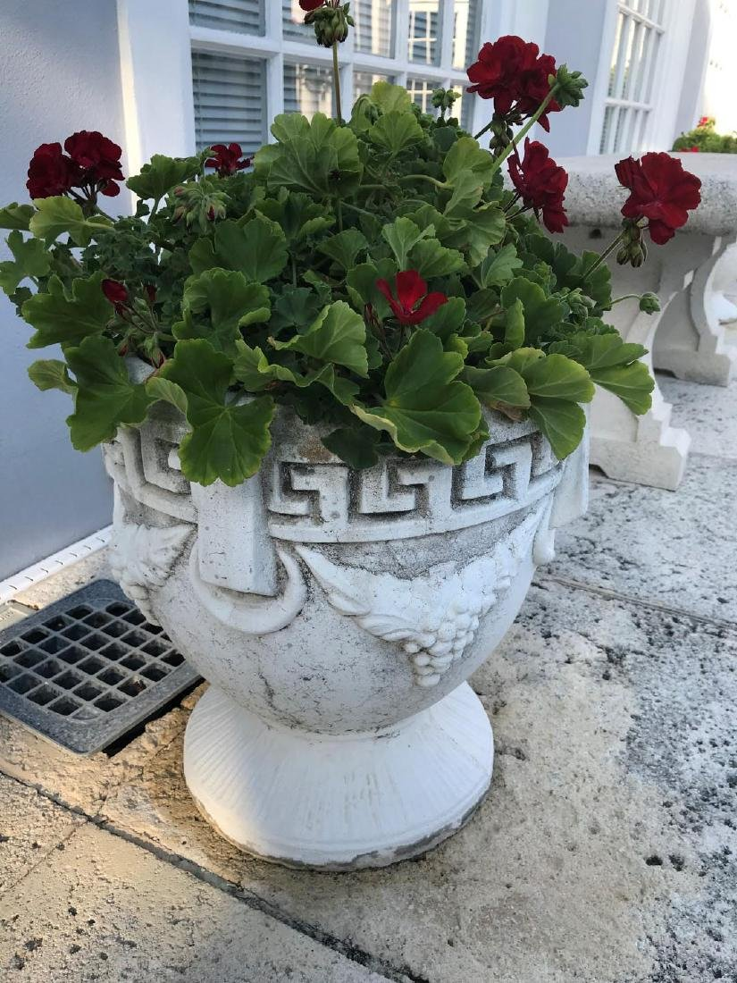 Set of Six Large Cement Urn Planters - Each Body with
