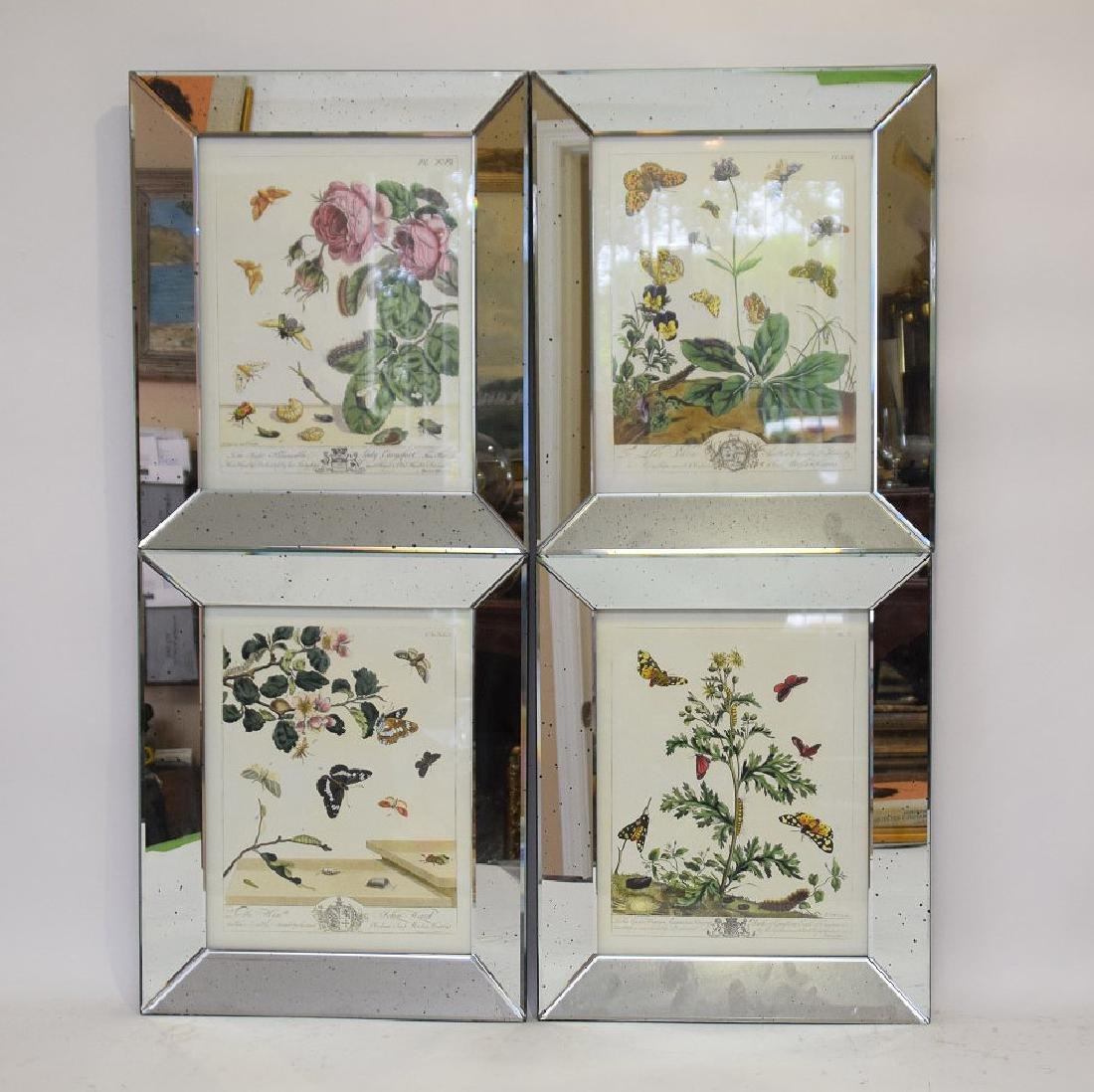 "4 decorative mirrored framed botanical prints, 18""h x"