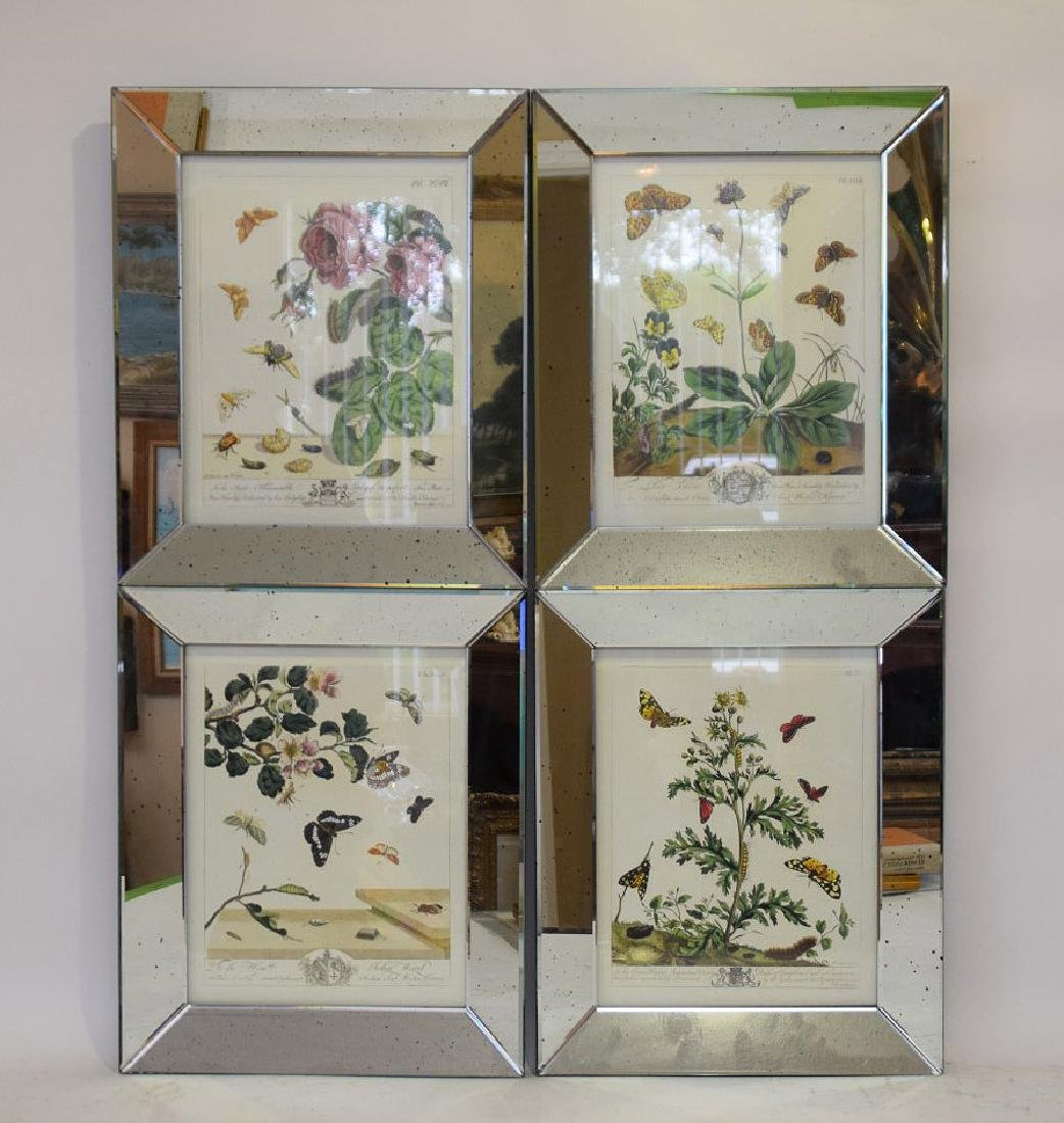"4 decorative mirrored framed botanical prints, 18""h x - 2"