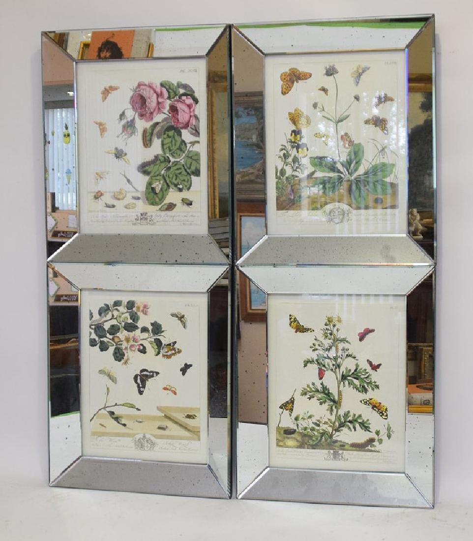 "4 decorative mirrored framed botanical prints, 18""h x - 3"