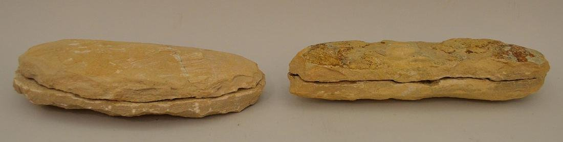 FOUR ANCIENT FISH FOSSILS - preserved in stone. - 6