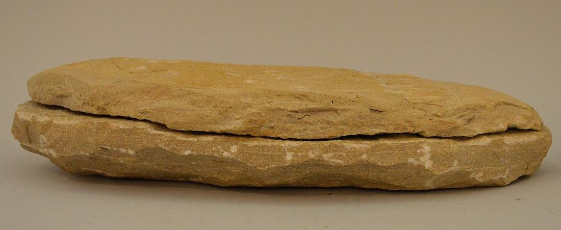 FOUR ANCIENT FISH FOSSILS - preserved in stone. - 7