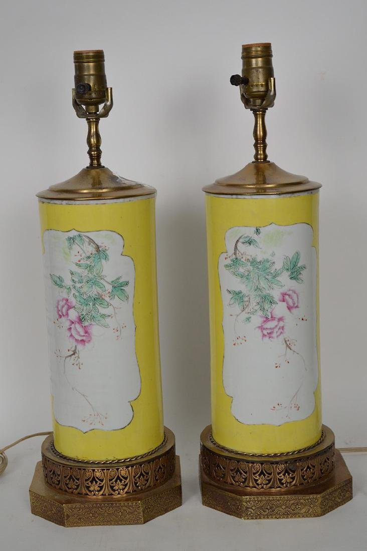 Pair Chinese lamps, bird & floral painted panels on