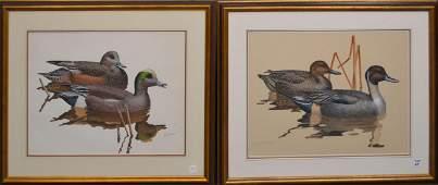 2 Duck Watercolors by Brian K Wheeler (American Born