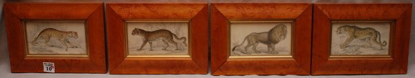 10: 4 colored Prints  of wild animals in maple frames,