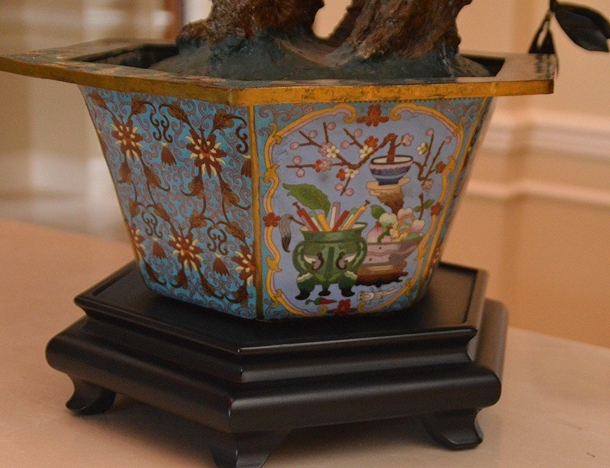 Monumental Jade Tree in cloisonné pot with wood stand. - 10