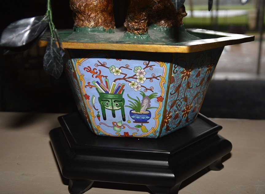 Monumental Jade Tree in cloisonné pot with wood stand. - 7