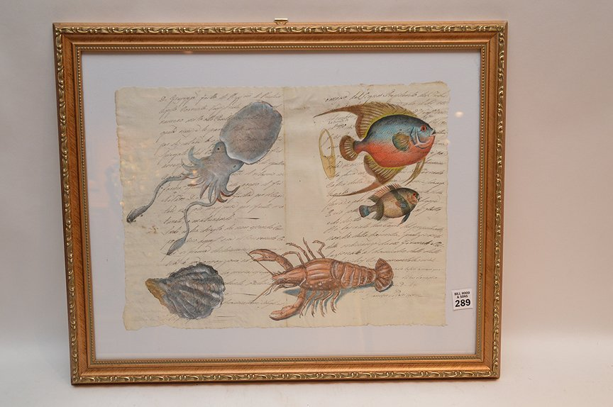 Italian, assorted sea life, hand painted on early 19th