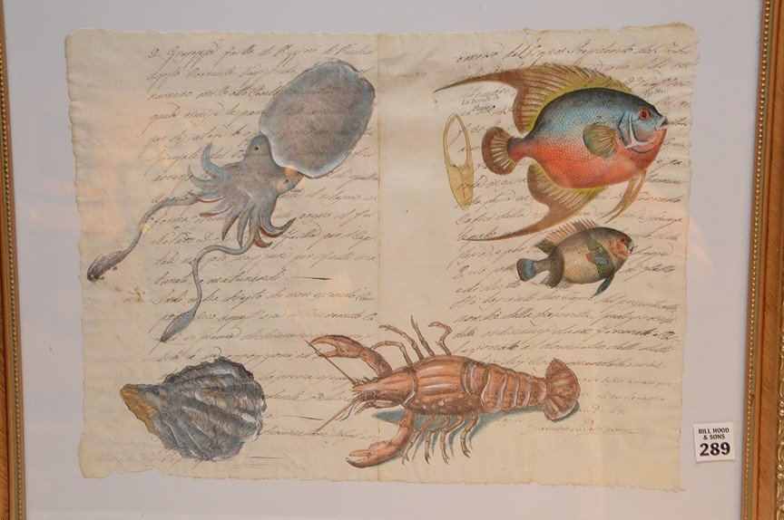Italian, assorted sea life, hand painted on early 19th - 2