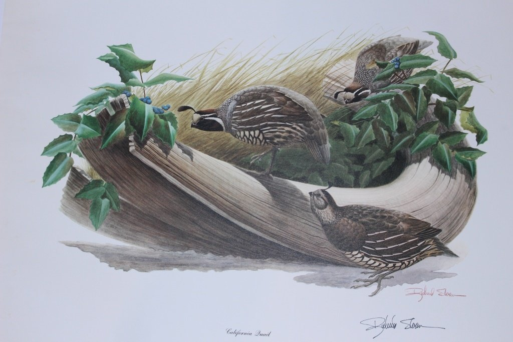 SET OF 2 RICHARD SLOAN SIGNED BIRD PRINTS