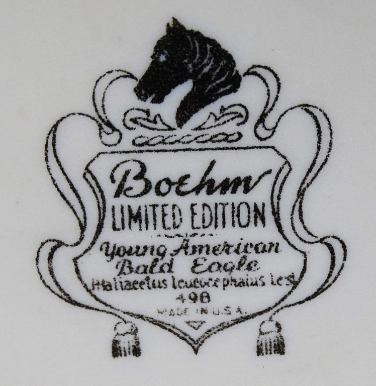 BOEHM PORCELAIN YOUNG AMERICAN BALD EAGLE - 5